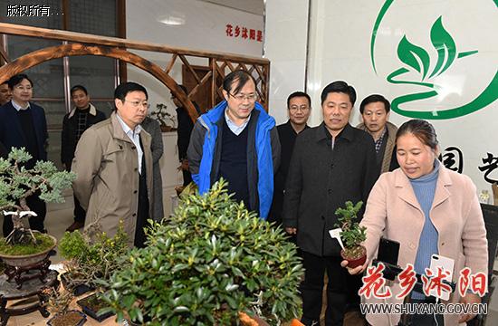 省委巡视整改第九专项督查组来沭阳县调研乡村振兴工作