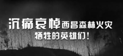 四川西昌山火救援19名牺牲勇士名单公布,年龄最小的不满25岁