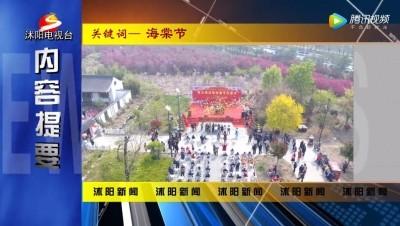 2020.4.8沭阳电视新闻