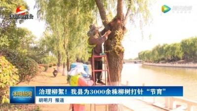 2020.5.23沭阳电视新闻