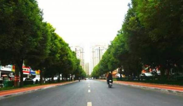 市民:临安东路东延工程为何至今没有完成?住建局:土地征收问题未处理到位!