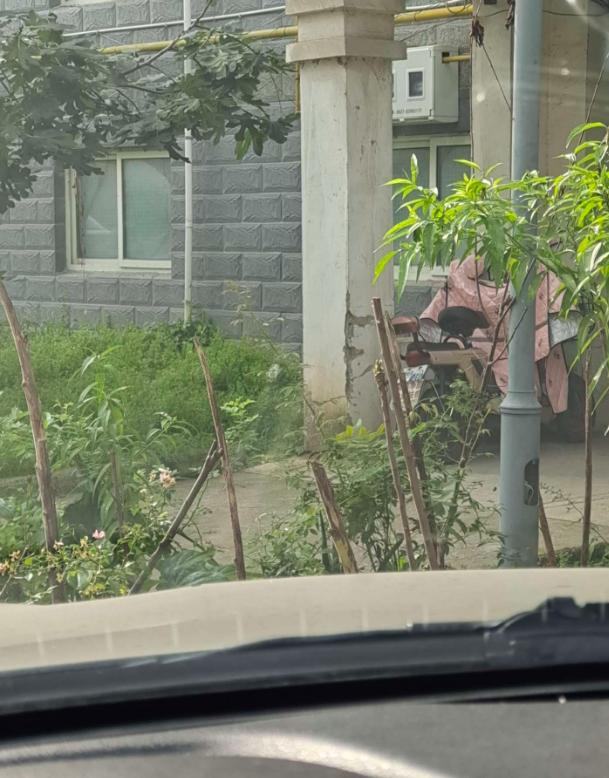"""孙巷小区二期垃圾桶成了""""拦路虎"""""""