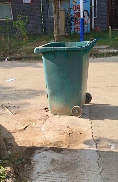 不觉得过分了吗?为什么垃圾桶天天这样在路上挡路呢