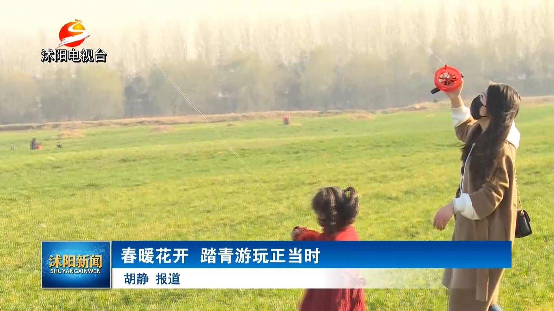 踏青正当时!沭阳沂河淌水漫桥附近不少市民放风筝