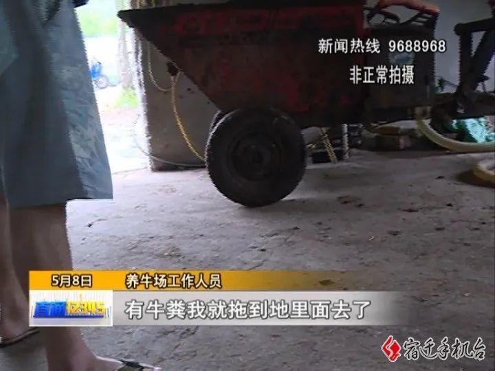 村民怒了!沭阳章集某养牛场违规营业,粪便露天堆放……